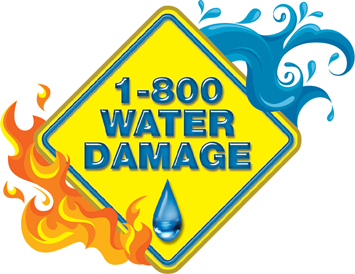 Our 1-800 Water Damage Client Experienced an 80% Increase Over 8 months in 2015